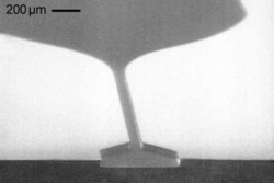 Etching of microfluidc structures in silicon
